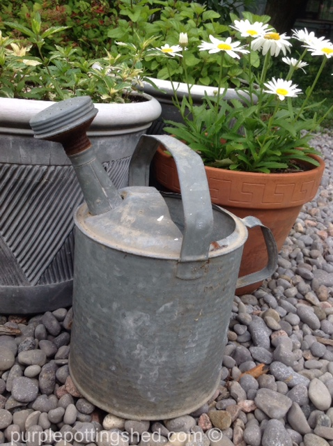 Watering can, antique.jpg