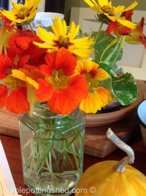 Bouquet, nasturtium, coreopsis.jpg
