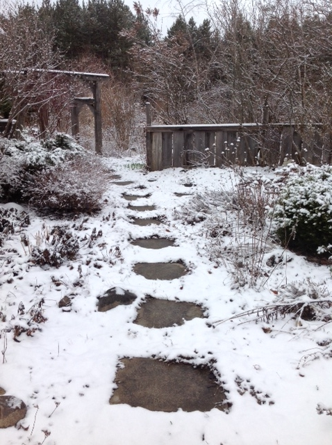 Garden with snow.jpg