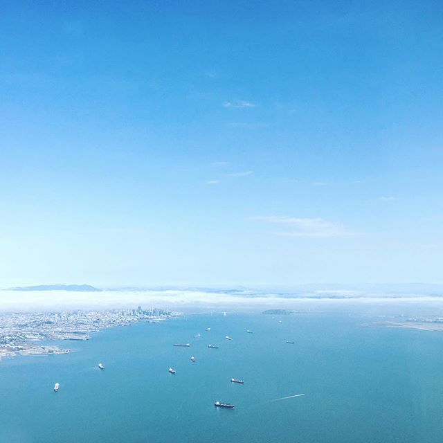 Bay blues. #sanfrancisco #bayarea #westcoast #beautiful #california