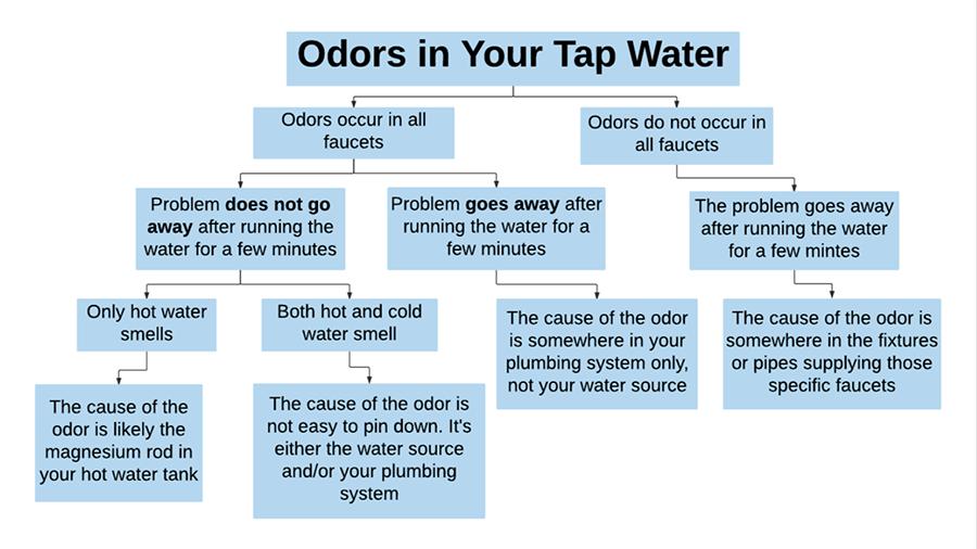 odor_flow_900.png