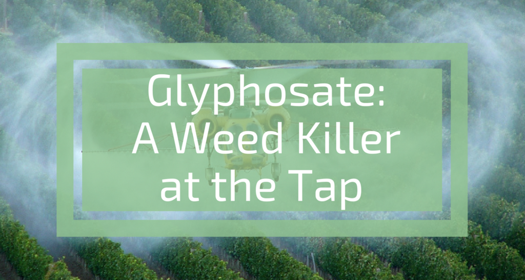 glyphosate most common herbicide puts tap water at risk simplewater