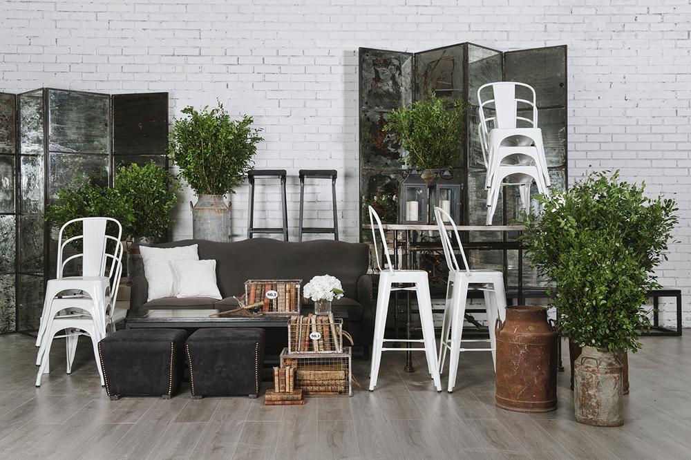 Renta de mobiliario C.jpg
