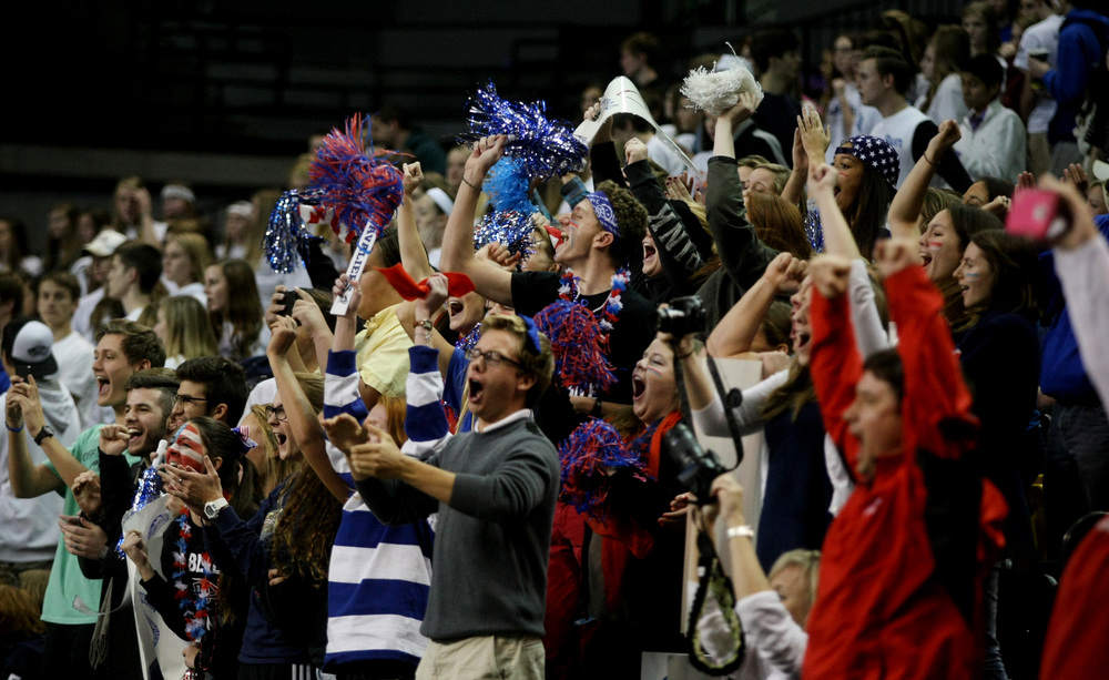 A group of Princess Anne fans cheer as they boys volleyball team beat Deep Run to claim the state championship over Deep Run, Friday, Nov. 21, 2014 at the Siegel Center in Richmond.  (Jason Hirschfeld | For The Virginian-Pilot)