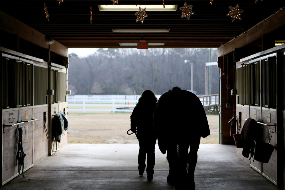 "Susan Watkins walks ""Sadie"" out of the EquiKids barn one last time, Tuesday, Dec. 20, 2016 in Virginia Beach. ""Sadie"" is retiring after an impressive career of public service including the towing of caskets for fallen soldiers at Arlington National Cemetery as well as serving on the Virginia Beach Police force before going on to help veterans at a therapeutic riding center. She'll retire with the officer for whom she patrolled with. (Jason Hirschfeld 