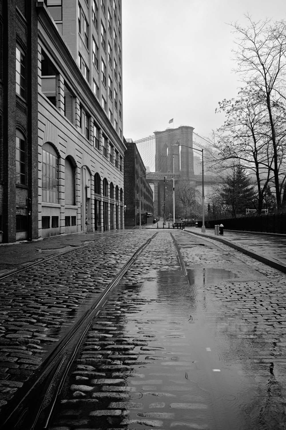 Dumbo Rainy Day