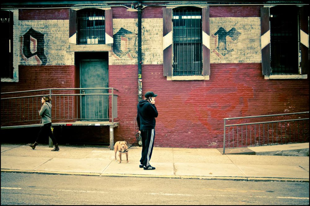 dog walk with mobile-Exposure.jpg