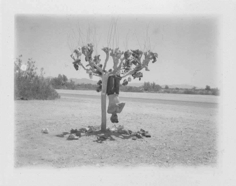 Flip Cassidy, Shoe Tree
