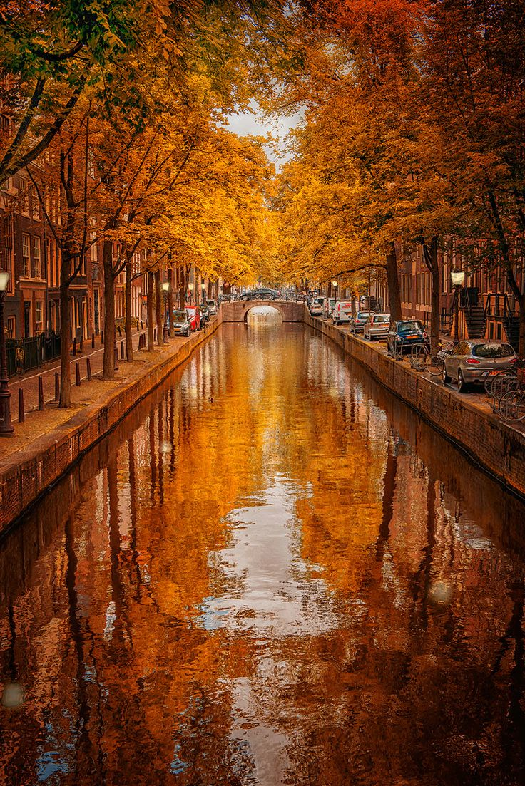Amsterdam-Autumn-Colors.jpg