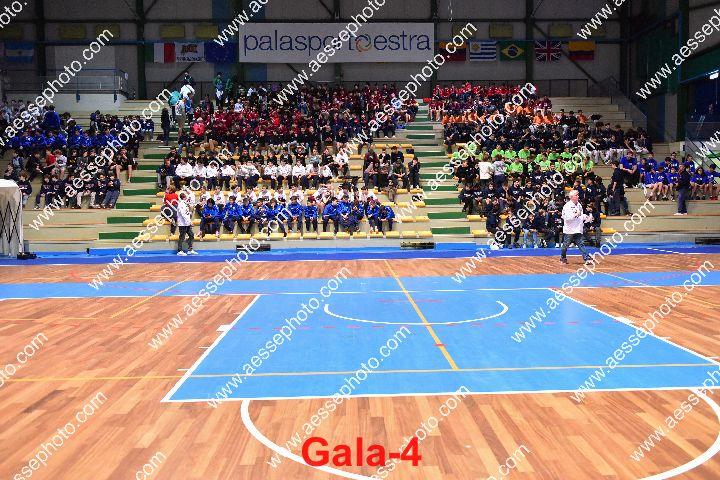 Gala-4.jpg