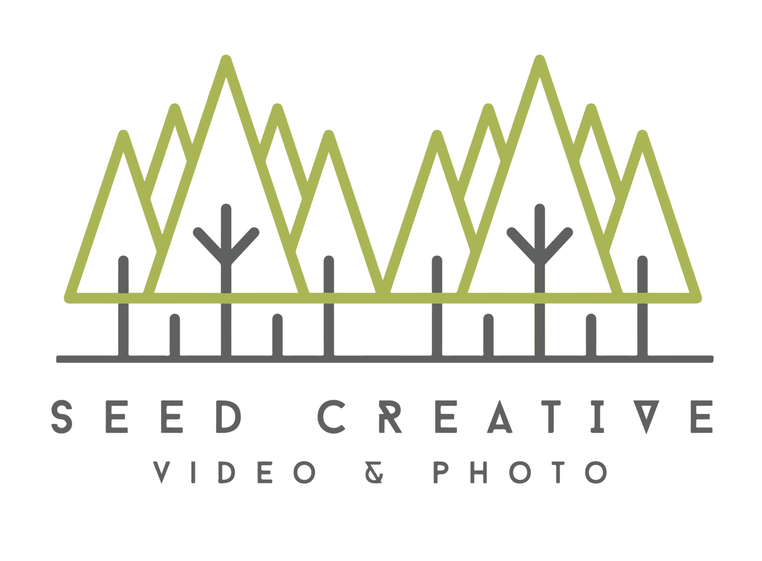 Seed 8mm Film Effect — Seed Creative