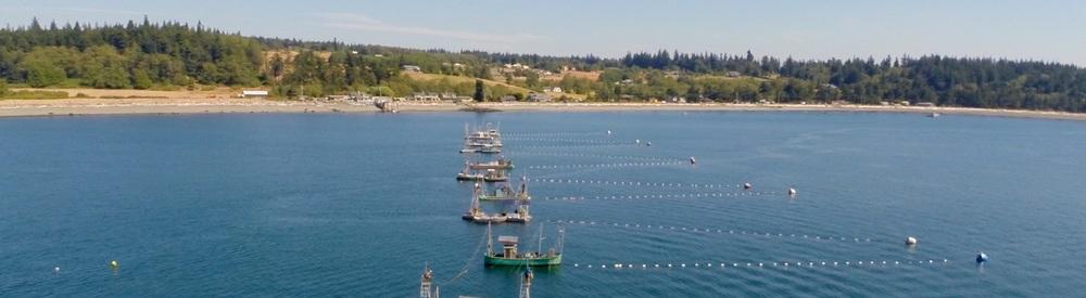 Reefnet Wild Salmon Gear