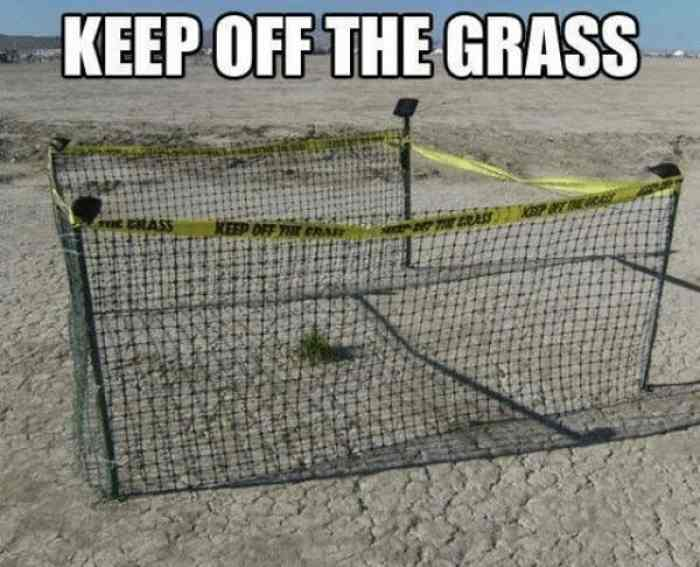 Keep off the Grass.jpg