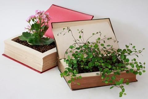 Book planters!