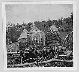 native-american-acorn-storage