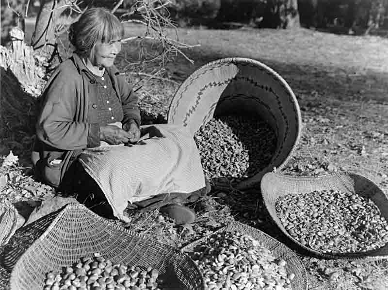 Maggie-Howard-Tabuce-preparing-acorns-Yosemite-Library