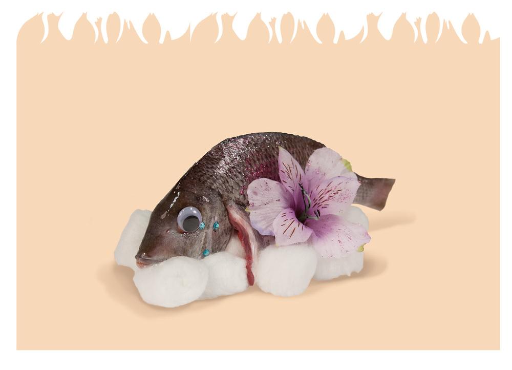 Sim_Fish02.jpg