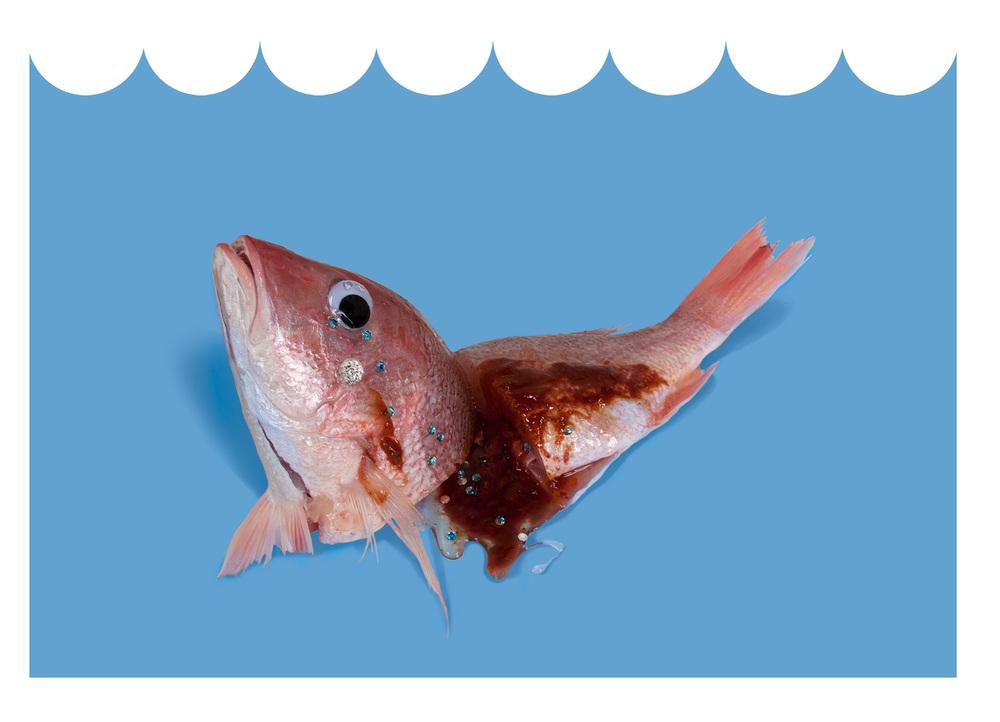 Sim_Fish06.jpg