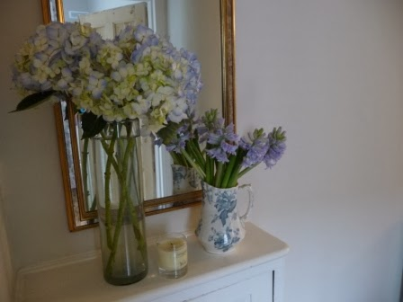 I am a huge fan of hydrangeas and I couldn't resist these pretty pale blue ones in my local florist. Aren't they divine?