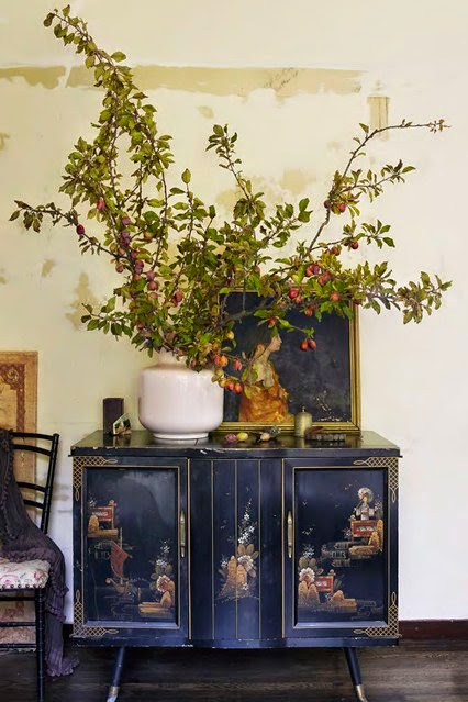 Wonderful branches of Italian plum tree