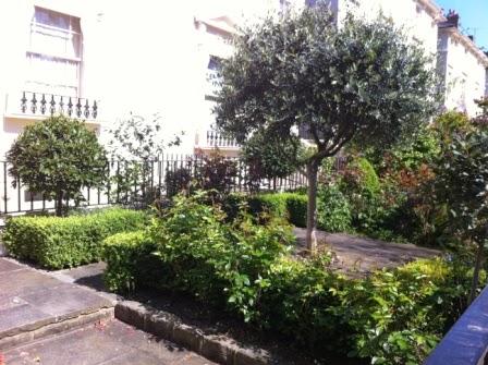 Local+Houses+&+Gardens+(11).JPG