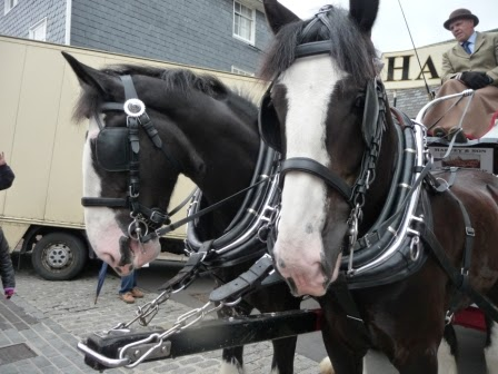 Dray horses from Harveys Brewery delivering the beer barrels