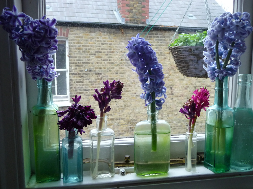 I have a row of vintage bottles on the window ledge above the kitchen sink and use these for any flowers whose stems break or any small offshoots on a stem. I never waste anything!!