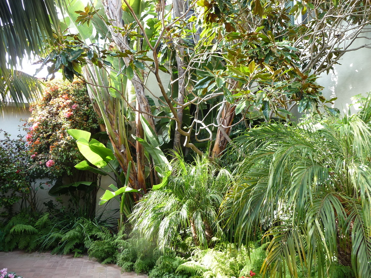 garden2.jpeg