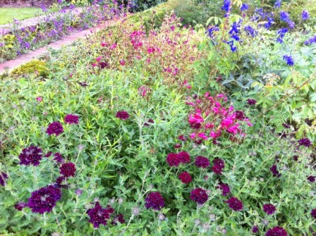 sissinghurst-flowers.6.jpeg