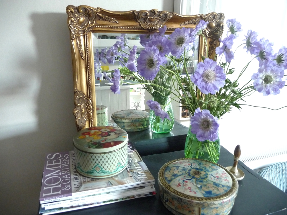 These are blue Scabias and are one of my favourite flowers. They last really well and I love all the off-shoots which I sometimes remove and put in some of my vintage bottles (I was in a hurry but will remove them in the next day or two to give the flowers a better chance of survival). Excuse the gilt mirror (not that attractive is it?!)  it's there for me to paint but I've not had time yet!! Am still toying with what paint colour I'll use to paint the frame. Any suggestions?