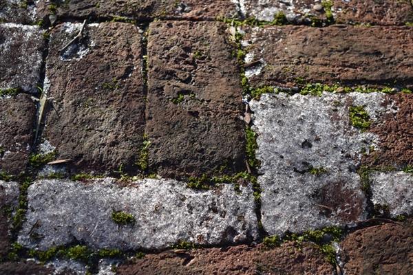 Icy paving stones
