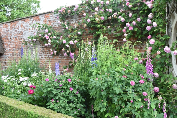 m_Rose Garden (12).jpg