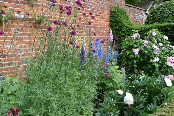 m_Rose Garden (44).jpg