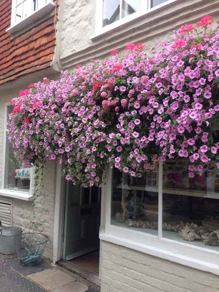 This display of petunias is quite something. You have to duck to enter the shop.  Look at the next image which is what you see as you exit the shop!