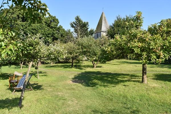m_Garden - orchard (3).jpg