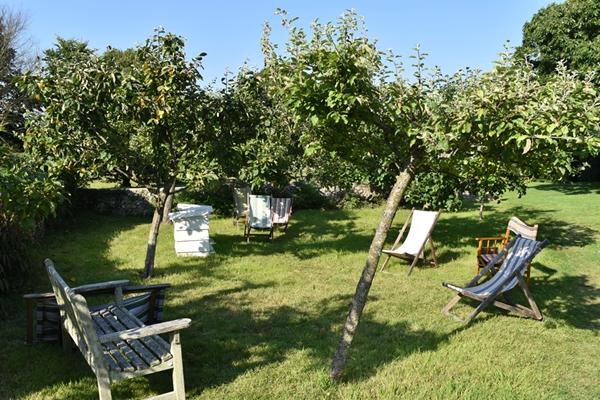 m_Garden - orchard (5).jpg
