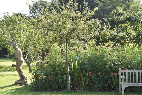 m_Garden - orchard (7).jpg