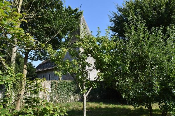 m_Garden - orchard (10).jpg