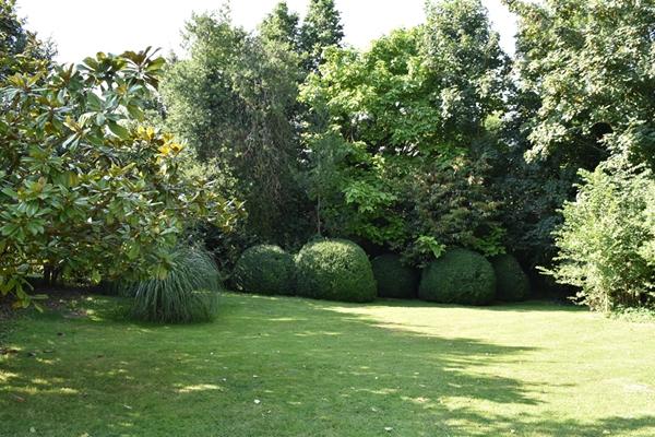 m_Garden (2).jpg