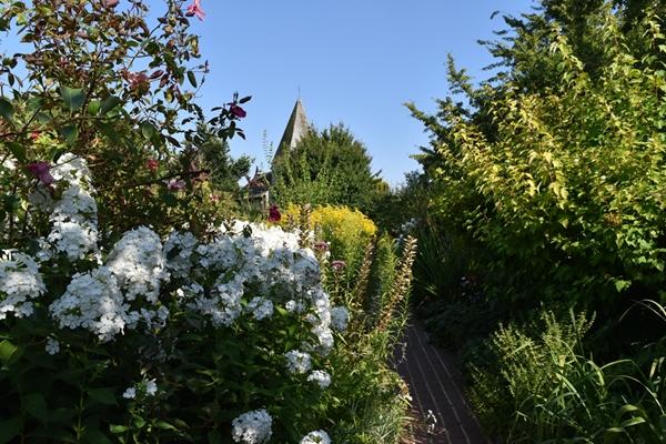 m_Garden (4).jpg