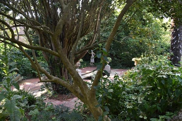 m_Garden (5).jpg