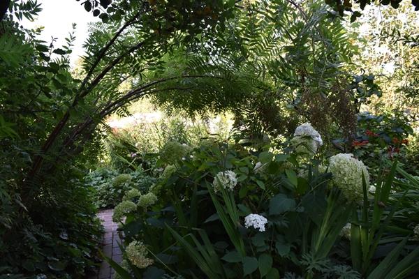 m_Garden (6).jpg