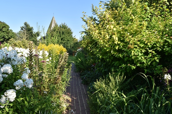 m_Garden (27).jpg