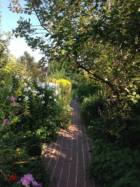 m_Garden (31).jpg