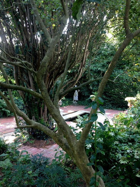 m_Garden (32).jpg