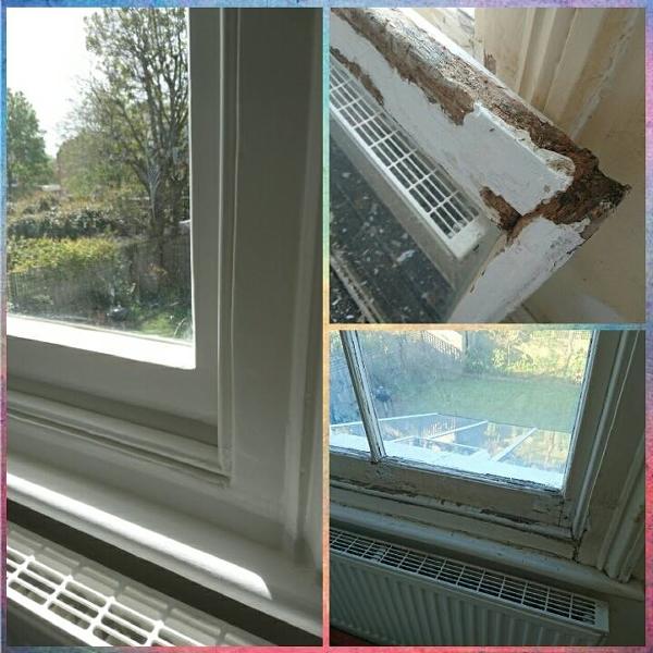 m_Before (windows).jpg