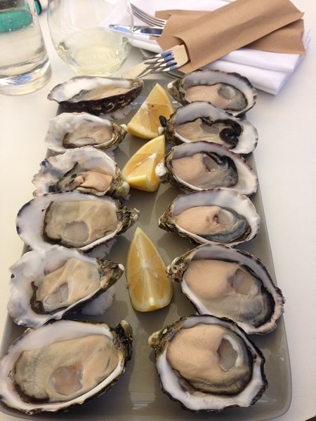 Coffin Bay king oysters - huge!
