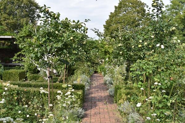 m_White garden (4).jpg