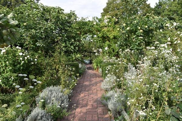 m_White garden (7).jpg