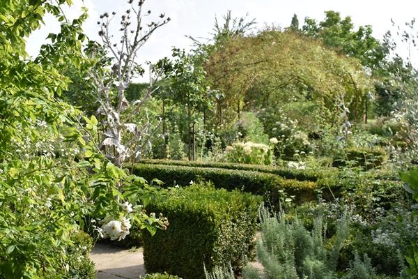 m_White garden (14).jpg